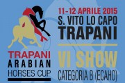 Speciale Trapani Arabian Horses Cup